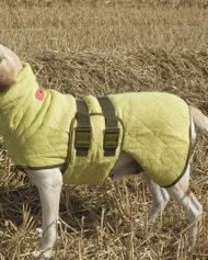hundehjertet_wet_dog_siccaro_handklade_til_hund