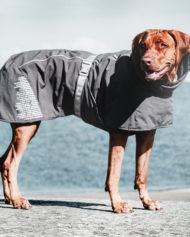 hundehjertet_hurtta_extreme_warmer_med_hund_ny_model