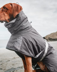 hundehjertet_hurtta_extreme_warmer_ny_model_hund_god_pasform