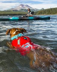 hundehjertet_float_coat_redningsvest_hund_rod
