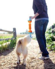 Hundehjertet_chuckit_rugged_bumper_nyhed_apport_til_hund