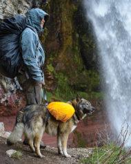 hundehjertet_hi_dry_overtrak_til_rygsak_vandretur