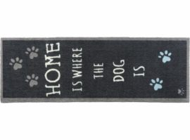 Howler & Scratch løber, Home