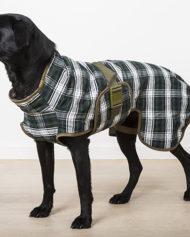 hundehjertet_siccaro_splash_torredragt_daekken_til_hund