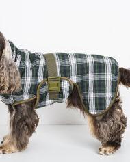 hundehjertet_siccaro_splash_torredragt_daekken_til_vaad_hund
