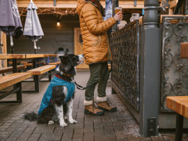 Ruffwear Stumptown Jacket, Metolius Blue