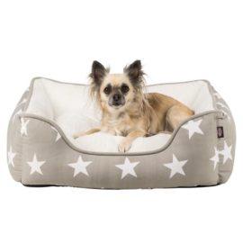 Hundeseng, Stars bed