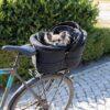 hundehjertet cykelkuv