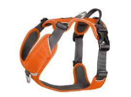 Dog Copenhagen Comfort Walk Pro, orange
