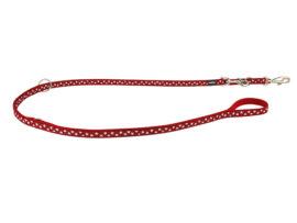 Red Dingo Dressurline, Hvide Stjerner
