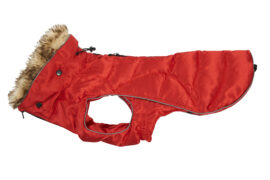 Buster Active Vinterjakke til Hund Rød Medium XX-Large